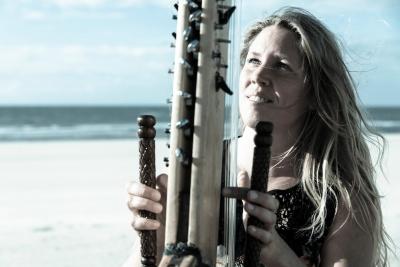 Afrikaanse-Kora-Harp-2