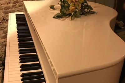 Uw-uitvaart-pianist-Fabian-van-Maarn-3