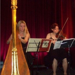 duo harp en viool-foto 3