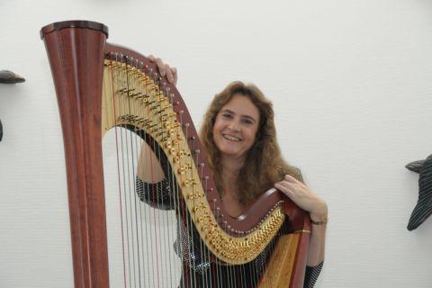 Harpiste klassiek, Keltisch en populair