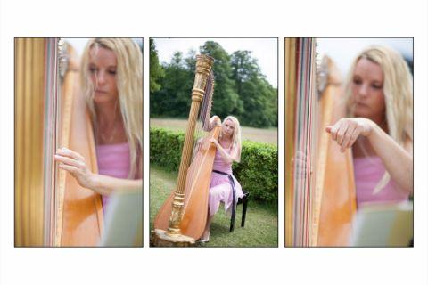 Harpiste of duo harpiste met violiste