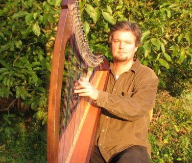 Veelzijdig Harpist