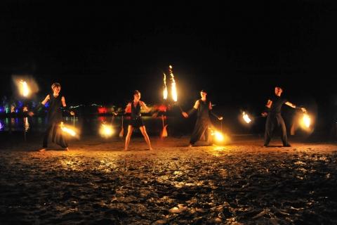 Vuurshow Fireshow Performance (3)